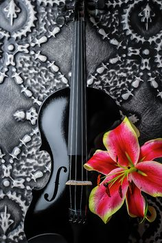 Black Violin And Tiger Lily Violin Photography, Fine Art Photography, Black Violin, Violin Art, Music Backgrounds, Music Pictures, Art Music, Art Tutorials, Musical Instruments