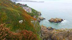 #cliff coast #coast line #ireland #nature #nature photography #photography #seaside
