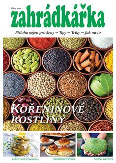 Od srpna lze muškáty množit řízkováním. Zakoření a přezimují   Zahrádkář Beans, Vegetables, Garden, Food, Garten, Lawn And Garden, Essen, Vegetable Recipes, Gardens