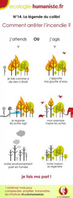 Connaissez-vous la légende du colibri de Pierre Rabhi ? Voici notre schéma #EcoloHumaniste du mois de septembre !