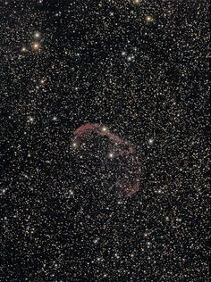 NGC6888 (Crescent Nebula) | by astrothad
