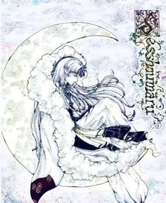 This reminds me of the story of the rabbit on the moon. Sesshomaru will never fail to earn my love.