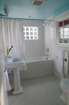 What I'd like to do to the window in our shower. Currently we shower between two shower curtains to protect it and that just plain sucks.