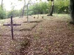 Cmentarz z I wojny światowej nr 115 - Rzepiennik Marciszewski