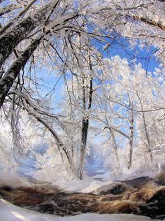 Natureland — heyfiki:   Winter memories II by KariLiimatainen