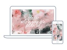 1 | Hello Lovely Living | Free Wallpapers For Your Desktop + Phone | Floral