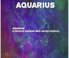 no truer words Aquarius Pisces Cusp, Aquarius Traits, Aquarius Love, Aquarius Quotes, Aquarius Woman, Age Of Aquarius, Zodiac Signs Aquarius, My Zodiac Sign, Zodiac Quotes