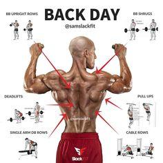 Building a bigger back