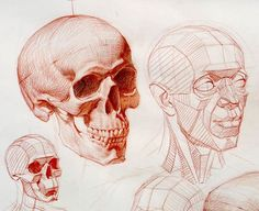 Detail 2 #art #figure #drawing #anatomy #anatomydrawing #sketching #figuredrawing #core #portrait #head #lighting #muscle #lifedrawing #la #artist #painting #light #color #oilpainting #sketching #bestdm #artoftheday #workshop #howto