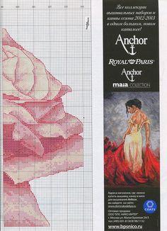 Rose - # 2