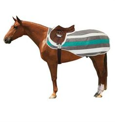 I need this to match my Ogilvy Shedrow Newmarket Exersise Sheet