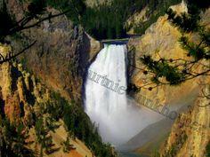 Lower Yellowstone Falls Yellowstone National Park by HikingTuesday