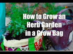 Grow fresh, aromatic herbs in a grow bag container.  It's quick, simple and inexpensive, saves space and provides flavorful herbs for cooking right outside your kitchen door.