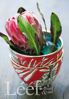 Protea ~ our national flower. Protea Art, Protea Flower, Flower Art, Art Flowers, Table Flowers, African Design, Flowers Nature, Pretty Pictures, Trees To Plant