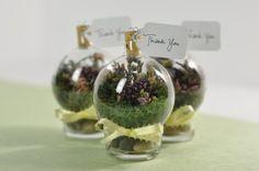 SAMPLE TERRARIUMS | Baby Shower Glass Terrarium Favor by ... | Little Spoon Events