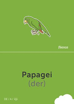 Papagei #CardFly #flience #animals #german #education #flashcard #language