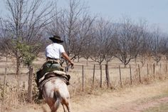 Horse riding with a gaucho in Salta argentina