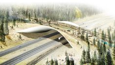 ARC / Wildlife Crossing