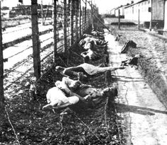 Mauthausen, Austria, Bodies of prisoners who committed suicide by touching the electrified fence.