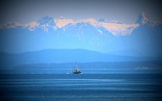 Tug and the Rockies by Todd Hodgins West Coast Canada, Tug Boats, Vancouver Island, Go Camping, Airplane View, To Go, Backyard, Wall Art, Outdoors
