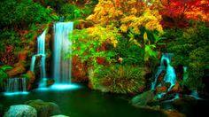 Bildresultat för waterfalls