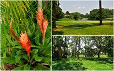 Fairway Woods, Sarasota Florida