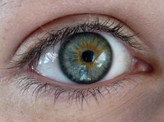 A link between dry eyes and premature ovarian failure (POF) has also been uncovered.