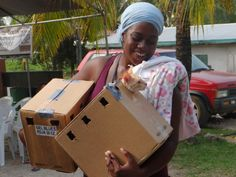 World Vets, International aid for Animals.  www.worldvets.org