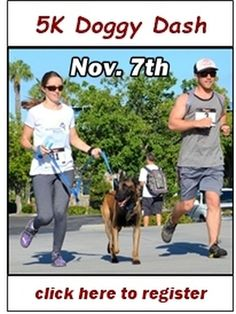 Pet Rescue Event: HALO's Doggy Dash in Tempe, AZ (November 7, 2015)