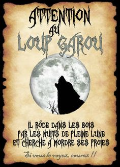 affiche loup garou École Harry Potter, Classe Harry Potter, Harry Potter Birthday, Halloween Potion Bottles, Halloween Labels, Halloween Books, Jarry Potter, Anniversaire Harry Potter, Magic Words