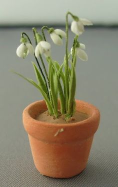 Cold Porcelain Flowers - Barrowdene Miniatures - Picasa Web Albums