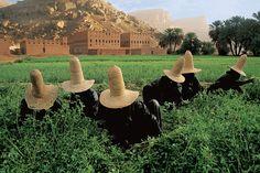 Yemen  From Steve McMurry's Blog