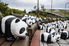 Panda World Tour - Taipei