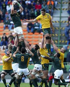RUGBY CHAMPIONSHIP 2013: Springboks / Wallabies (28-8) Rugby Championship, Sports Personality, Rugby Players, Australia, Lady And Gentlemen, Girls Out, Nfl, 2013, My Style
