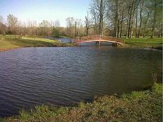 Perfect Farm! spring fed stocked pond, can't beat that.  Also room for chickens and horses.