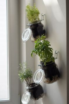DIY herb garden, step by step instructions, indoor herb garden yourself . - DIY herb garden, step by step instructions, indoor herb garden yourself … - Vertical Herb Gardens, Vertical Garden Diy, Hanging Herb Gardens, Hanging Herbs, Diy Herb Garden, Garden Steps, Herb Gardening, Organic Gardening, Garden Guide