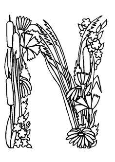 Maintenant tu peux ajouter la lettre N à ta collection de fleurs, à colorier