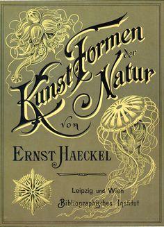 Art - Haeckel - Ernst Haeckel Kunstformen_der_Natur_cover ...