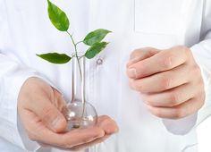 STEEPLED THL, health & wellbeing, research http://www.thl.fi/fi/tutkimus-ja-asiantuntijatyo