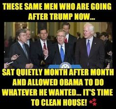 Clean out all the Democrats and the GOP (Rino) elite.