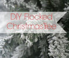 I really, really wanted a flocked Christmas tree.  Flocked trees are those beautiful snowy ones.  Not the ones with white plastic needles, the ones that are whi…