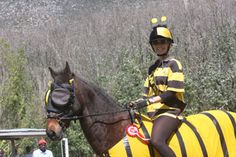 "Amber's horse, ""Chico"" wearing the ""Standard Guardian Mask with 95% Sunshades"" 2012 South Africa"