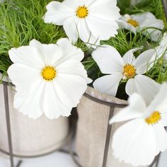 Détail lampe✨✨ Belle journée IG☀️ #marielapirate#DIY#fleurs#lampe