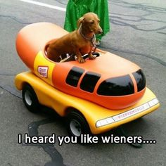 I love my weenies!! Lol. :)