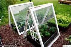 Best Vegetables To Grow In Raised Garden Patio Pergola, Outdoor Landscaping, Outdoor Gardens, Veg Garden, Garden Beds, Vegetable Gardening, Organic Gardening, Garden Crafts, Garden Projects