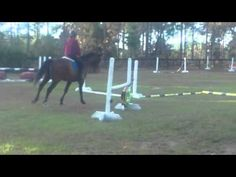 A zig-zag of poles to improve your horse's 'rideability' | Eventing Connect