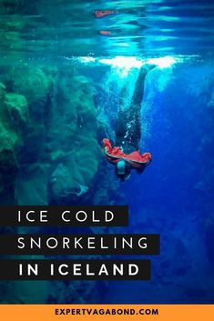The Silfra Fissure: Ice Cold Snorkeling In Iceland! More at ExpertVagabond.com #Iceland #Europe #Adventure #Travel #Inspiration Outfits Winter, Outfits Spring, Backpacking Europe, Adventure Awaits, Adventure Travel, Adventure Quotes, Bucket List Europe, Europe Holidays, Hiking Spots