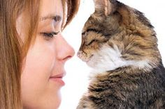 Body language tells cat growling,how to talk cat language reading people body language,tail swishing what does the cat say. Garra, How To Read People, Happy Images, Cat Behavior, Body Language, Understanding Yourself, Make Me Smile, Pets, Animals