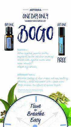 Grab this BOGO today!