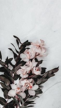 in my life Cool Backgrounds, Aesthetic Backgrounds, Aesthetic Iphone Wallpaper, Wallpaper Backgrounds, Aesthetic Wallpapers, Watercolor Wallpaper Iphone, Flower Phone Wallpaper, Gold Wallpaper, Flower Aesthetic